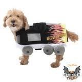 Bret Michaels Dog Costume (Road Dog Costume with Flames, Size X-Small)