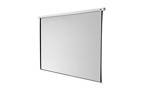 celexon 167'' Manual Economy 118 x 118 inches viewing area | 1:1 format | Manual Pull Down Projector Screen | Wall or ceiling mounting | Gain factor of 1.0 for home cinema & business environments by Celexon
