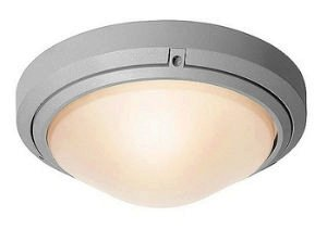 Nickel Cutting Point (Access Lighting 20355MG-SAT/FST Oceanus 10.5-inch Wet Location Ceiling/Wall Fixture,  Satin Finish and Frosted Glass)