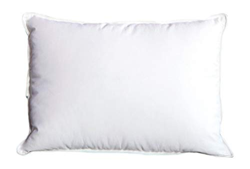 - Cloud Nine Comforts Contessa Pillow, Boudoir, Siberian White (Renewed)