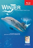 Winter, The Dolphin That Can Blu-ray Disc