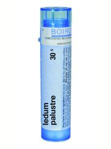 Boiron Ledum palustre - 30C - 80 pellets