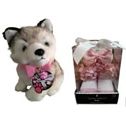 Baby 0-12 month Headwrap Socks and Toy Husky with Real Dog Collar Girl Giftset