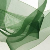 Organza Ribbon Forest Green 22mm 10m length ()