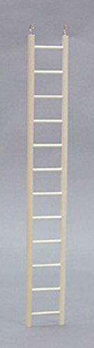 North American Pet BBO22783 Bob Ladder Keet for Pets, 24-Inch