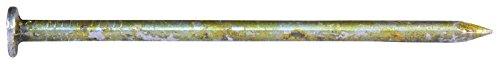 NATIONAL NAIL 65185 5-Pound 12D Sinker Nail by National Nail