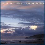 After the Storm by Varsha Saxena (2011-04-05)