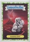 Pompeii Jay (Trading Card) 2017 Topps Garbage Pail Kids Adam-Geddon - Natural Disasters Sticker - Puke #13a ()