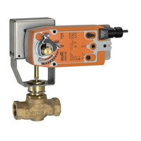 Globe Valve by Belimo Aircontrols (Usa), Inc.