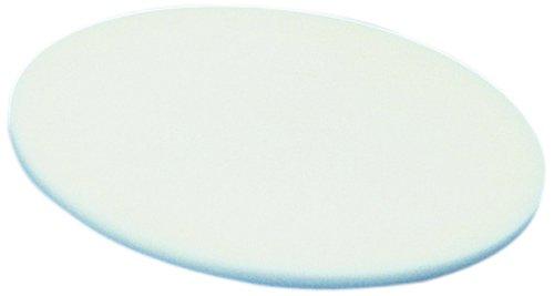 CoorsTek High-Alumina Disc