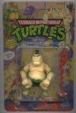 (Teenage Mutant Ninja Turtles