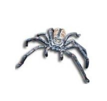 (Science and Nature 78081 Huntsman Spider - Animals of Australia Realistic Toy Replica)