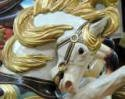 carousel-screen-saver-photo-slide-show