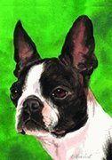 "Boston Terrier Barbara Van Vliet Garden Portrait Flag 12"" x 17"" For Sale"