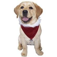 Amazon.com : Velvet Christmas Dog Bandana Small : Pet Bandanas ...