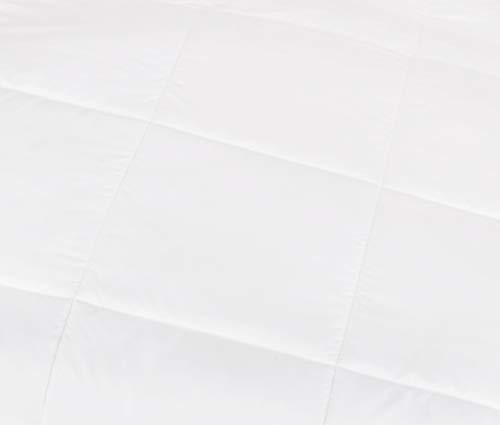 Pinzon Hypoallergenic al replacement Comforters
