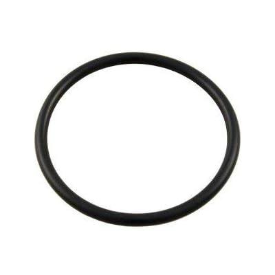 Waterway Plastics Swimming Pool Filter Collar O-Ring 805-0435B for WVS003 Valve Same as 805-0435: Garden & Outdoor