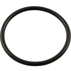 Waterway Plastics Swimming Pool Chlorinator Lid VITON O-Ring 805-0348VB Lid O-Ring for CAG004-W or CLC012-W Chlorinator Same as - O-ring Waterway