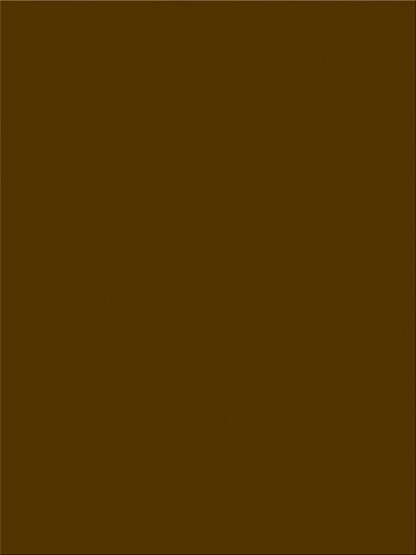 "Pacon SunWorks Construction Paper, 9"" x 12"", 100-Count, Dark Brown (6804)"