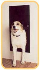 Amazon Com Solo Pet Door Automatic Electronic Dog And