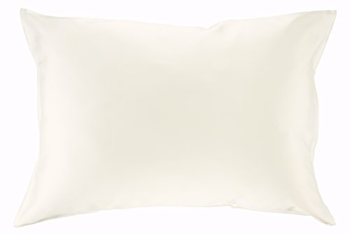 Celestial Silk 100% Silk Pillowcase for Hair Luxury 25 Momme Mulberry Silk, Charmeuse Silk on Both Sides -Gift Wrapped- (Standard, Natural, Undyed -