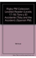 Rigby PM Coleccion: Individual Student Edition turquesa (turquoise) Toño y el accidente (Toby and the Accident) (Spanish Edition) pdf