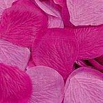 Amscan-Cool-Rose-Flower-Petals