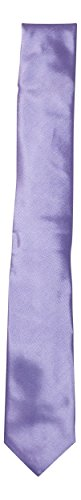 Alfani Mens Bennington Silk Blend Slim Neck Tie
