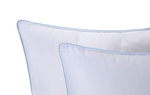 Set of 2 Queen Sized Pillows Bed Pillows Positioners