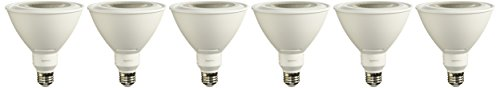 Equivalent, Daylight, Dimmable, PAR38 LED Light Bulb | 6-Pack ()
