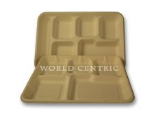 biodegradable tray - 9