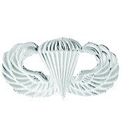 (US Army Jump Wings Lapel Pin Mirror Finish )