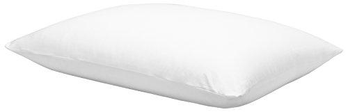 Calvin Klein Home 1110113-KG-W1-B6 Modern Cotton Harrison Pillowcase Pair, King , White