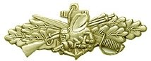 United States Navy Seabees Combat Lapel Pin