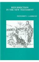Resurrection in the New Testament Festschrift J. Lambrecht (Bibliotheca Ephemeridum Theologicarum Lovaniensium) by Brand: Peeters