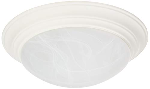 (Designers Fountain 1245L-WH Ceiling Lights, White)