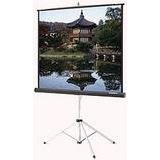 - Imager Fixed Frame Projection Screen Viewing Area: 49