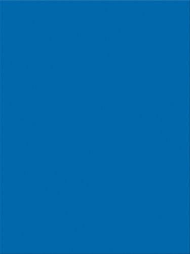 Pacon SunWorks Construction Paper, 9 x 12, 100-Count, Bright Blue (7504)