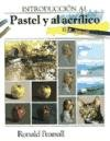 Introduccion Al Pastel y Al Acrilico (Spanish Edition) by Agata