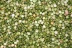 Peas, Split, Green, Organic, 5# Bulk