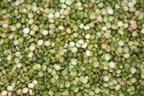 Peas, Split, Green, Organic, 5# Bulk by Varies - Natural Food