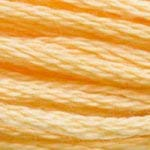 DMC Floss - 3855 Light Autumn Gold