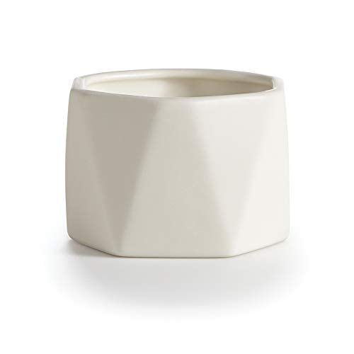 Illume Essentials Gardenia Dylan Ceramic, 5.5 oz Candle, White ()