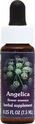 Flower Essence Services Angelica Essence, 0.25 Ounce by Flower Essence (Angelica Flower Essence)
