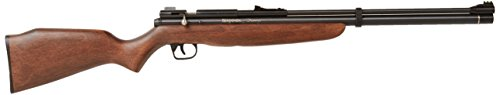Crosman BP9M22GP  Benjamin Discovery Pre-Charged Pneumatic PCP Dual Fuel .22 Air Rifle and Pump (Tank Charged Pre)