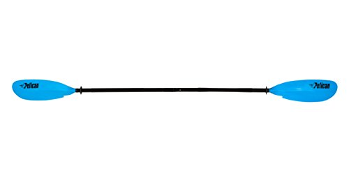 89 Paddle - 3