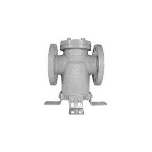 Titan 8.0 BS86-CS Simplex Basket Strainer, 8