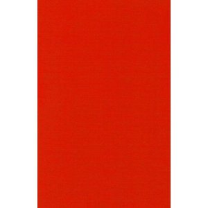 Filz /Öko-Tex gepr/üft 20x30 cm Farbe 20//rot