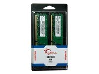 (G.SKILL 4GB (2 x 2GB) 240-Pin SDRAM DDR2 800 (PC2 6400) Dual Channel Kit Desktop Memory F2-6400CL5D-4GBNT)