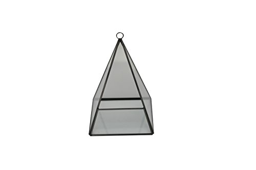 Pyramid Shape with Flat Base Glass Prism Terrarium with Black Rim / Air Plant Display Case / Tea Light Candle Holder (display hanger not included) - by Home-X